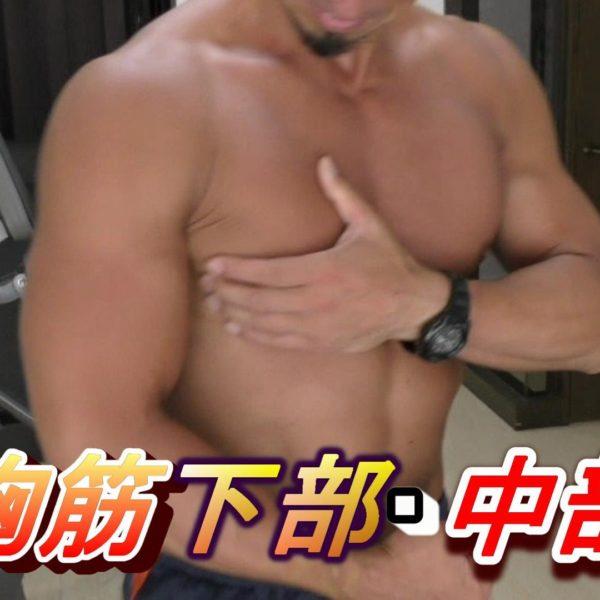 くっきり綺麗な胸!大胸筋の下部と中部を徹底的に鍛える!【筋トレ動画】