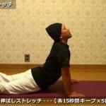 腰痛改善ストレッチ【筋トレ動画】