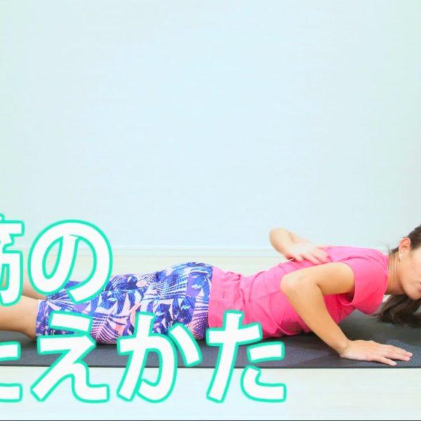 背筋の鍛え方【筋トレ動画】