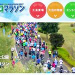 第23回手賀沼エコマラソン【マラソン大会情報】