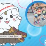 第13回さのマラソン大会【マラソン大会情報】