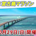 エコアイランド宮古島大会2017【マラソン大会情報】