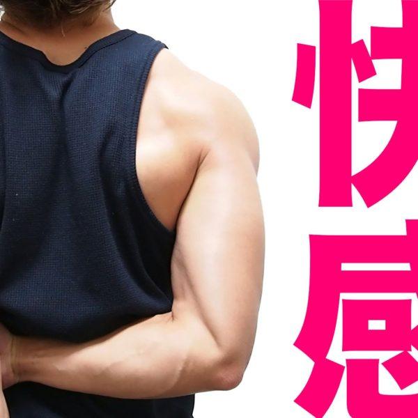 ストレッチ3選をご紹介!快感・リラックス・姿勢改善!【ストレッチ動画】
