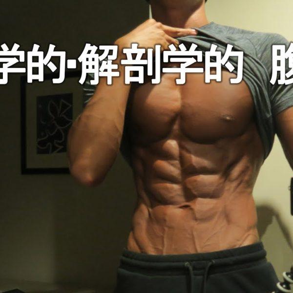 腹筋を割る方法【科学的解剖学的アプローチ】前編