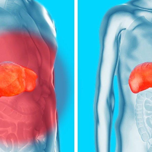 腎臓・肝臓・膀胱のデトックス