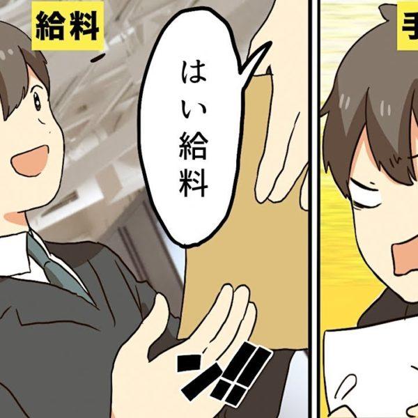 【漫画】学生から社会人になると驚くこと5選【マンガ動画】