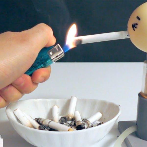 【実験】タバコがいかに体に悪いかが分かる実験(1箱分)