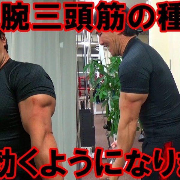 腕のトレーニングで上腕三頭筋が痛いほど効く練習法!外側頭と内側頭の鍛え方