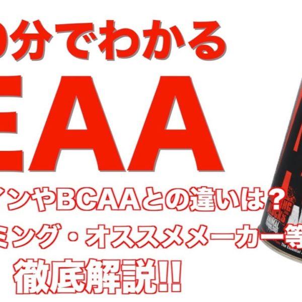 10分でわかる【EAA】!! 摂取タイミングやオススメメーカー等徹底解説!!