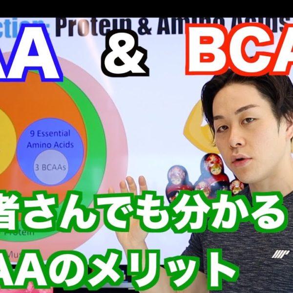 EAAとBCAAについて改めて解説!オススメのEAAサプリは?