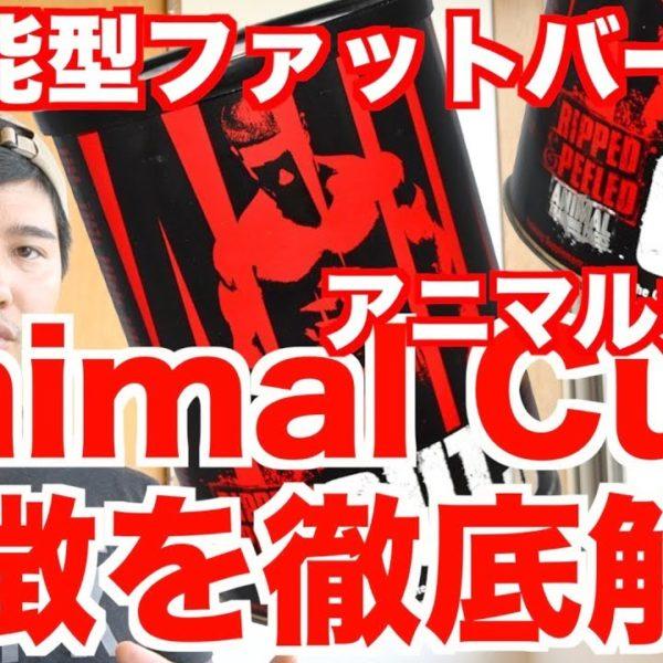 【超万能型ファットバーナー】Animal Cuts/アニマルカッツの特徴を徹底解説!!