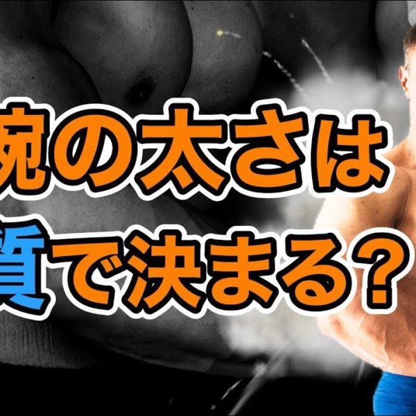 前腕を太くするために山本義徳氏がお勧めするトレーニングとは?