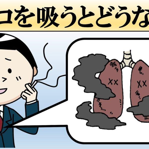 タバコを吸うとどうなる?やめるとどうなる?【喫煙・禁煙の影響】