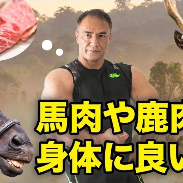 本当は身体に良い!?馬肉や鹿肉の驚くべき効果を山本義徳氏が解説!