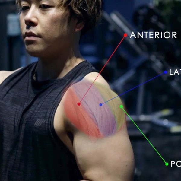 筋活動の高い肩のオススメ3種目。新しい刺激で肩全体を大きくするダンベル以外のトレーニング