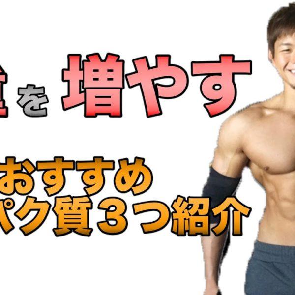 【バルクアップ】タンパク質の多いおすすめ食材3つを紹介【筋肉】