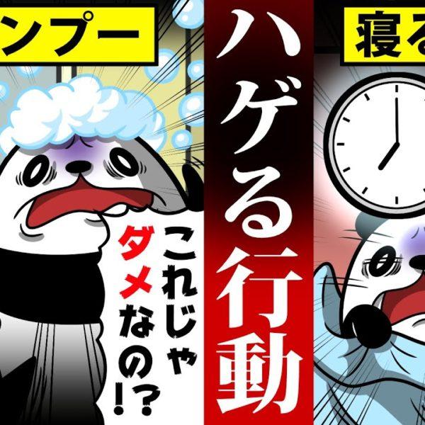 【アニメ】絶対にやっておきたい薄毛対策!