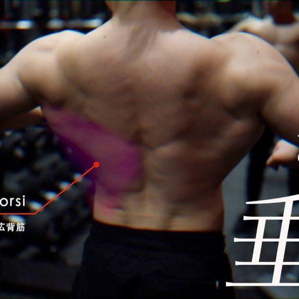 あまり知られていない懸垂で背中トレーニング。広背筋に効くやり方を上級〜初級までレベルを3段階でご紹介。