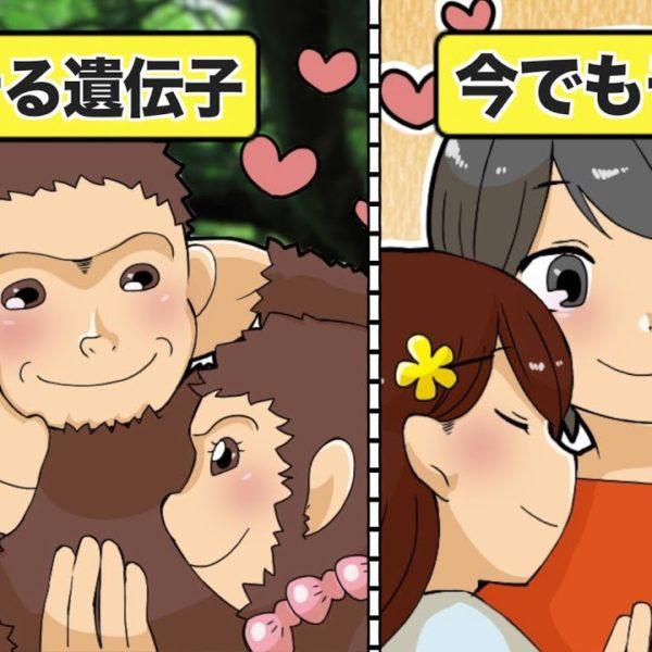 【漫画】無敵!?生物学から見たモテ男の特徴(ポケモンパロディ)【イヴイヴ漫画】