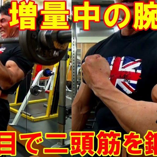 【筋トレ】増量期の腕のトレーニング!3種目で上腕二頭筋を限界まで追い込む【解説付】