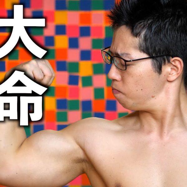 【筋トレ】腕を太くする為の二頭筋&三頭筋のトレーニング方法!【二頭肥大】