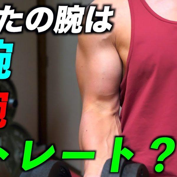 【筋トレ】あなたの腕はどのタイプ? それぞれのタイプに合ったベストなトレーニング法!【O腕・X腕・ストレート腕】