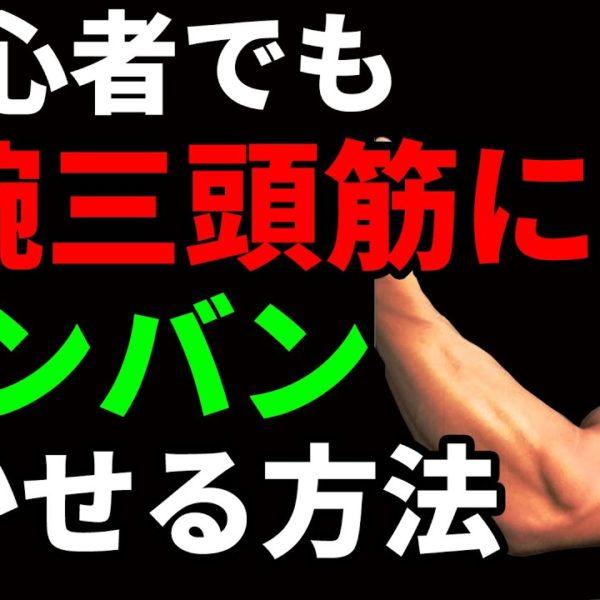 初心者でも上腕三頭筋にバンバン効かせる筋トレの方法!太い腕を目指せ!