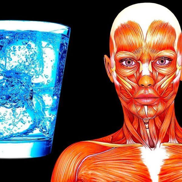 20日間水を飲むだけの生活で、私のからだに起こったこと。