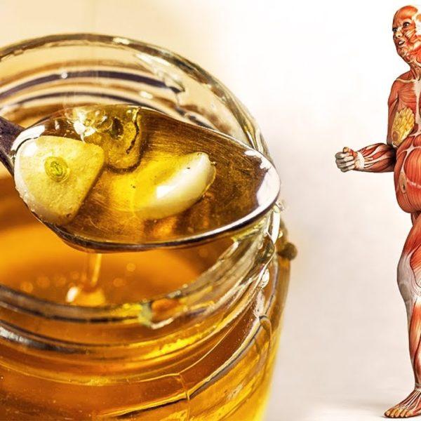 毎日、ハチミツを食べ始めると、あなたの体に何が起こるでしょう?