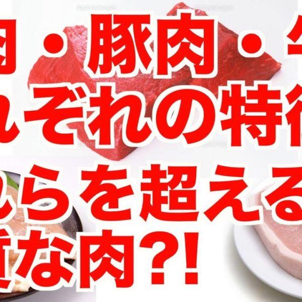 ダイエットにおける【鶏肉・豚肉・牛肉】の特徴と、それらを超える良質な肉?!