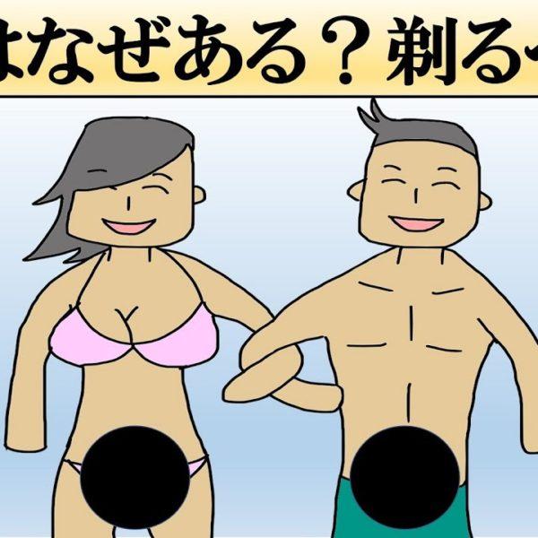 なぜ人に陰毛があるの?剃るべきなの?【科学】