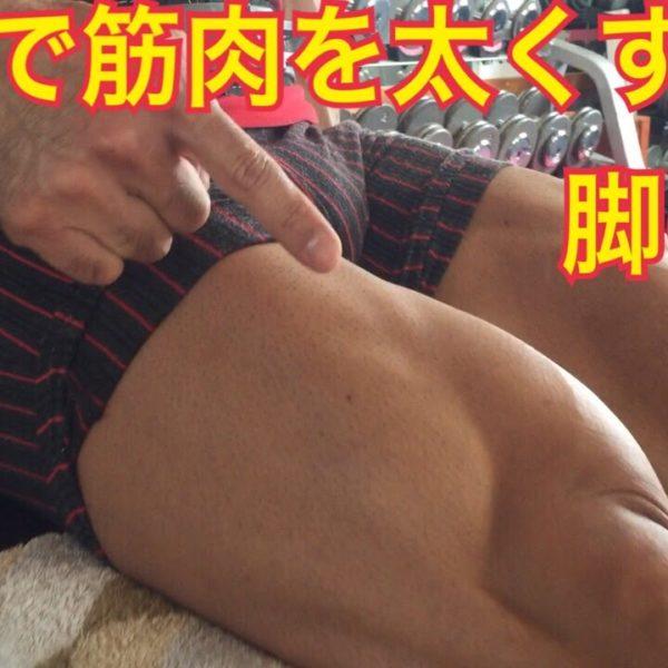 脚の筋肉を大きくするトレーニングの説明【筋トレ動画】