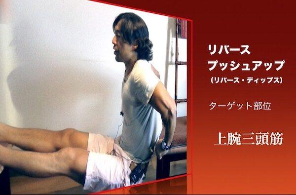 腕を太くする三頭筋トレーニング!三頭筋エクササイズ動画【筋トレ動画】